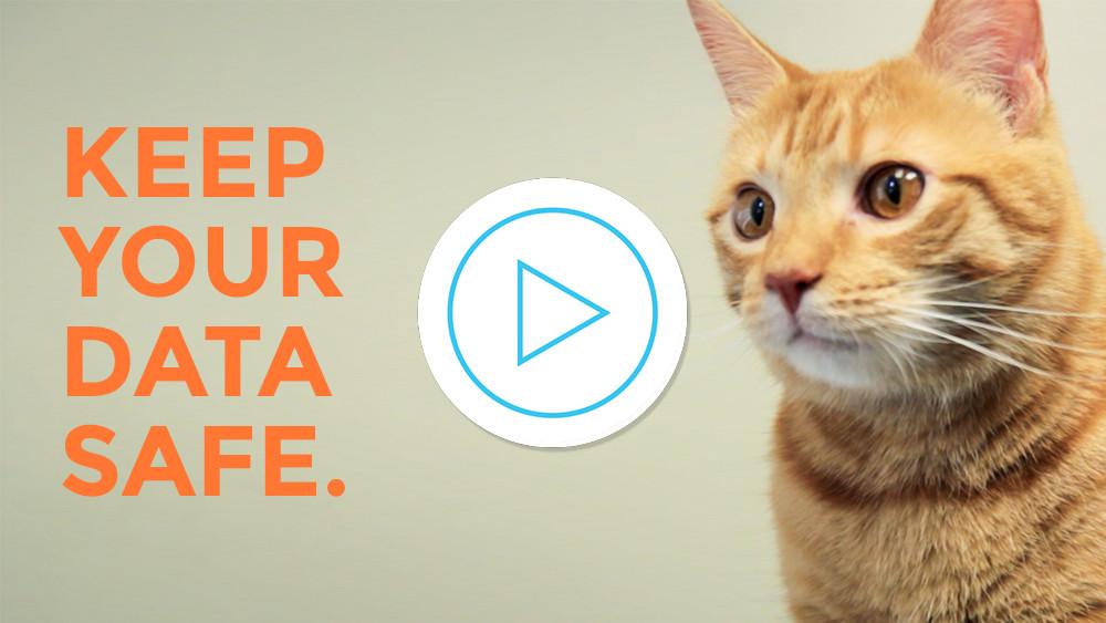 Smart Backup video